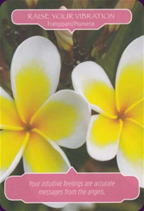 flower therapy oracle reviews images aeclectic tarot
