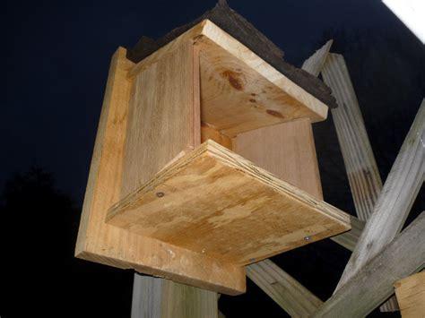 bird house vacancies south burlington vt bird nest box south burlington vermont