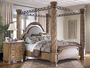 Unique, Canopy, Beds, Furniture, For, Best, Inspirations, Ideas