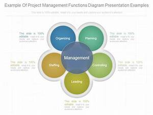 Example Of Project Management Functions Diagram