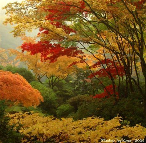 garden in fall gallery 2