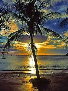 pretty sunset pictures photos and images for