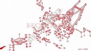 Frame For Honda Nx 125 1997   Honda Motorcycles  U0026 Atvs