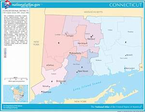 American Politics: Connecticut Senate Election 2010