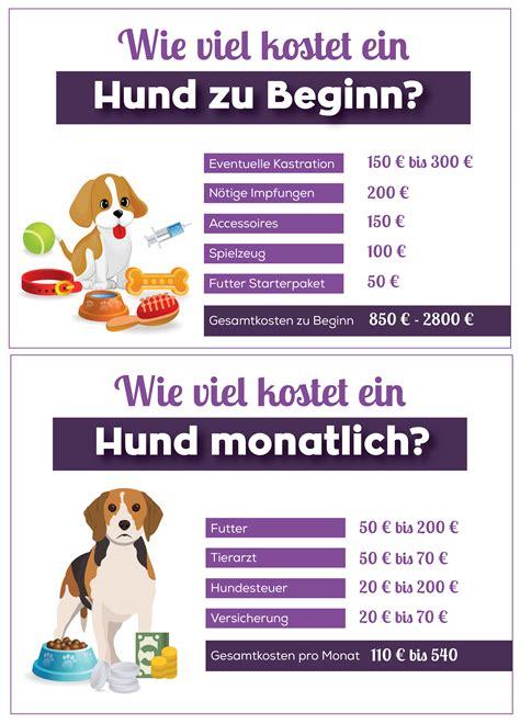 Wie Viel Kostet Ein Hund? Übersicht über Alle Kosten Für