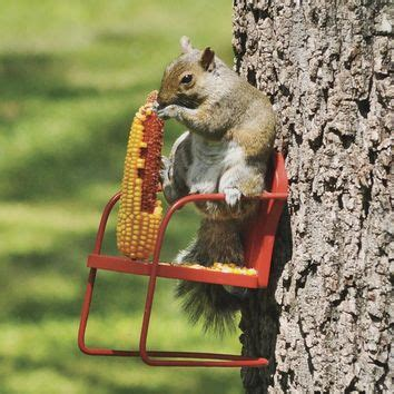 Squirrel Feeder Retro Chair by Retro Lawn Chair Squirrel Feeder From Plowhearth