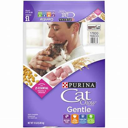 Purina Cat Chow Gentle Dry Bag Stomach