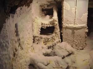 champignon de maison dangereux 4 expert champignon bois With champignon de maison dangereux