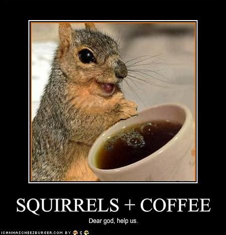Funny Good morning Coffee Meme Images   Freshmorningquotes