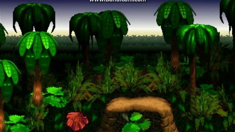 Kong Background Kong Country Background 4296 187 Background Check All