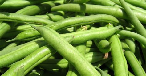 what to do with fresh green beans casa en la cocina ideas for fresh green beans