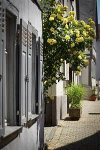 Limburg Verkaufsoffener Sonntag : einen sonnigen sonntag in limburg pentaxians ~ Orissabook.com Haus und Dekorationen