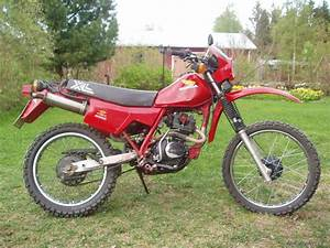 Honda Xl 125 : bikepics 1983 honda xl 125 ~ Medecine-chirurgie-esthetiques.com Avis de Voitures