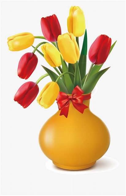 Vase Clipart Flower Transparent Tulip Clipartkey