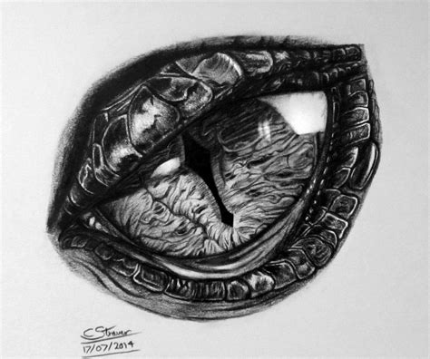 dragon eye drawing  lethalchris  deviantart