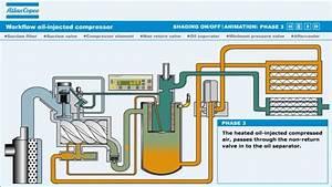 Oil Compressor Diagram