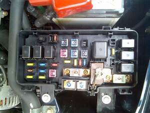 Fuse Box 3 - My Photos - Gallery