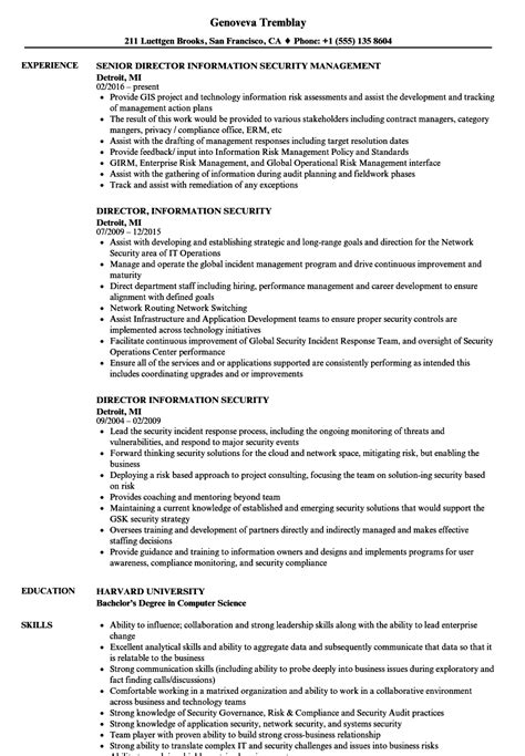Director Of Security Resume Exles by Director Information Security Resume Sles Velvet