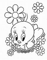 Daisy Coloring Flower Scout Printable sketch template