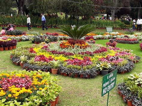 Types Of Gardens : Beautiful Garden. Lots Of Different Type Of Flower, Plants