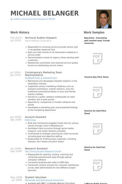 auditor resume sles visualcv resume sles database