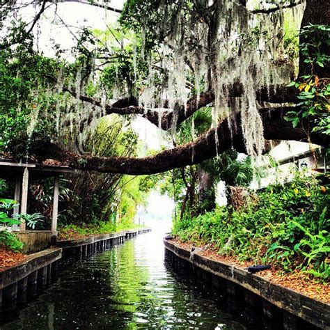 Lake Virginia Winter Park Boat Tour by Sydney Erwin And Harry Pool S Wedding Website