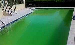 l39eau de ma piscine est verte que faire piscine et bassin With pourquoi l eau de ma piscine est verte