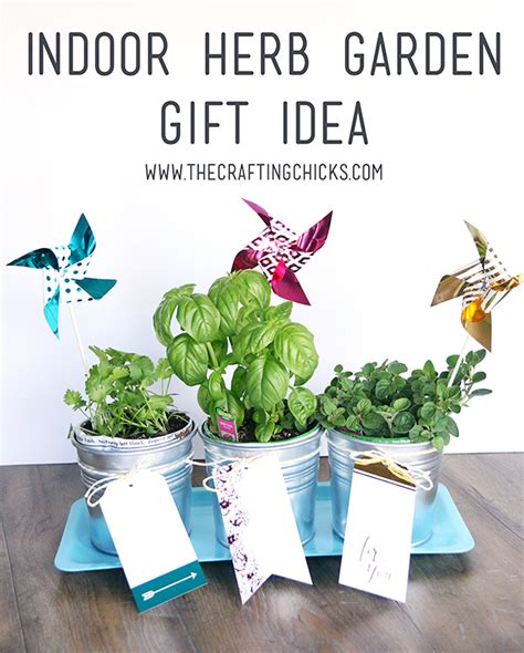 indoor herb garden with minc gold foil touches the