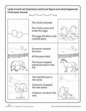 story comprehension drawing conclusions worksheet