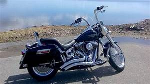 Wiring Diagram 2002 Harley Davidson Fatboy