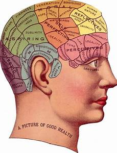 4 Vintage Phrenology Head Diagrams