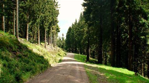 wandern thueringer wald rennsteig bei oberhof youtube