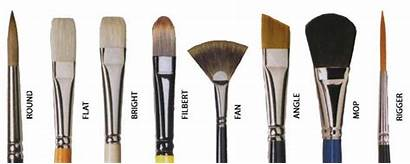 Paint Brush Types Brushes Different Type Acrylic