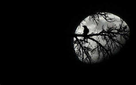 tree moon black white gothic clipart clipground