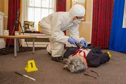 Crime Scene Investigation Experience Lastminute