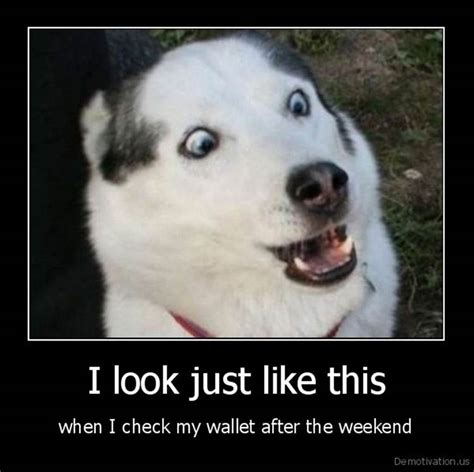 Friday Humor Pictures To Pin On Pinterest Page 11  Pinsdaddy