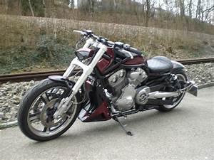 V Rod Occasion : motorrad occasion kaufen harley davidson vrscf 1250 v rod muscle abs ors motos gmbh urdorf ~ Medecine-chirurgie-esthetiques.com Avis de Voitures