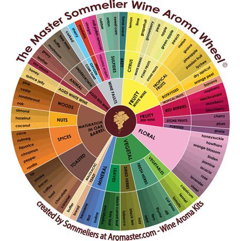 ruota degli aromi del vino  aromi  varieta  uve