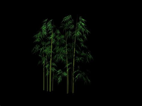 plant  bamboo  model downloadfree  models