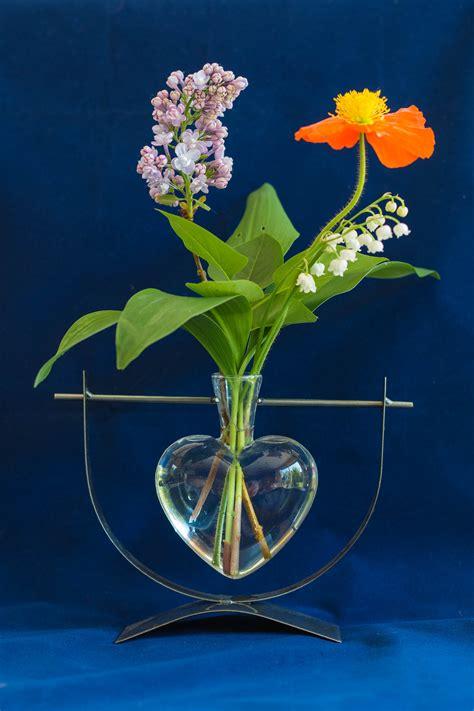 images gratuites verre bouquet vase flore