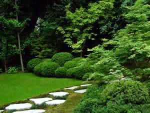 Japanese Maple Tree Garden Ideas