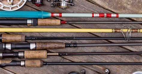 saltwater fishing rods top models compared