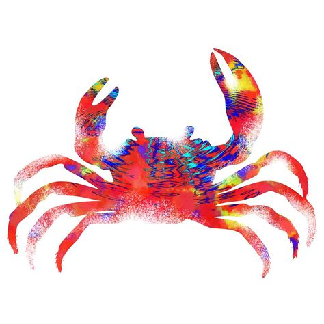 colorful crab colorful crab painting by diana