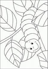 Caterpillar Coloring Template Hungry Pre Preschool Bug Kindergarten Pages Crafts Activities Printable Spring Insect Bugs Kigaportal Very Sheets Templates Colouring sketch template