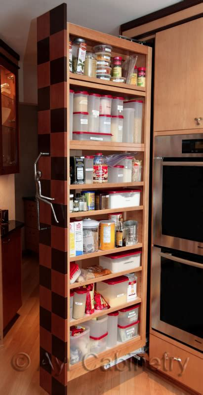 kitchen pantry cabinet with pull out shelves modern and classic pull out pantry design homesfeed 9824