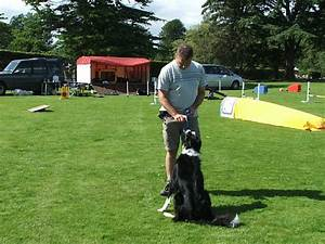 forres dog walking services picture galllery forres dog With local dog walking services