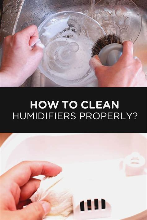 How To Clean Humidifiers Properly  Airneeds