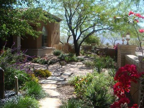 desert landscaping small yard beautiful modern home