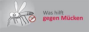 Was Hilft Gegen Wespen : was hilft gegen m cken wistar newswistar news ~ Whattoseeinmadrid.com Haus und Dekorationen