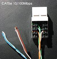 Cat5e Wiring Diagram Receptical : how to wire an ethernet and phone jack using a single ~ A.2002-acura-tl-radio.info Haus und Dekorationen